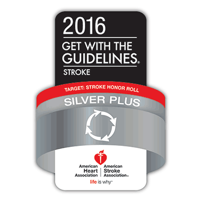 2016 Get With The Guidelines® Stroke - Silver Plus Honor Roll